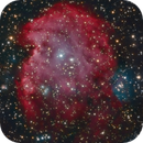 SH2-252 - The Monkey Head Nebula - OSC,                                Álmos Balási