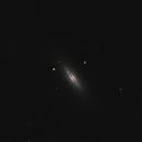M102 (NGC5866) Spindle Galaxy,                                brad_burgess