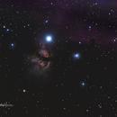 Flame and Horsehead Nebulas,                                Billy Harris