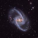 NGC 1365  Great Barred Spiral Galaxy,                                Evan Tsai
