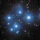 The Pleiades,                                Rino