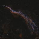 NGC6960, Witch's Broom, Finger of God, Western Veil Nebula,                    Robert Huerbsch