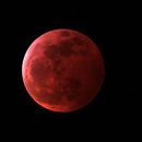 Lunar Eclipse,                                Michael Hedenus