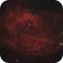 SH 2-261, Lower's Nebula,                                Madratter