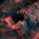 NGC 7000 - North American Nebula,                                Tom Davis