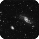 NGC 3718 & 2729,                                Dan Wilson