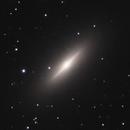 NGC 3115,                                Gary Imm