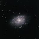 NGC 7793,                                Sergio G. S.