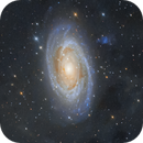 Bode's Nebula - M81 and M82,                                DanielZoliro