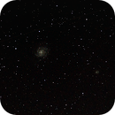 Pinwheel Galaxy M101,                                Wayne Allen
