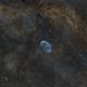 Crescent nebula NGC 6888. First narrowband project,                                Bradley Hargrave