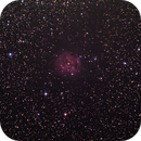 Cocoon Nebula,                                André Hartwigsen