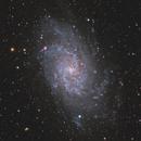 M33 - Triangulum Galaxy,                                Yizhou Zhang