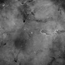 IC1396 Elephant's Trunk Nebula H-Alpha !!,                                Young Joon Byun