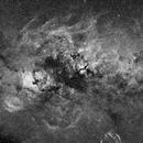 Wide field (29°x19°) image of Swan (Cyg) constellation in H alpha spectrum line (grayscale),                                Vladimir Machek