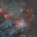 NGC 2070 Tarantula Nebula,                                sebastian soto quezada