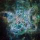 NGC2070 Tarantula Core,                                John Ebersole