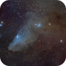 Blue Horsehead Nebula,                                Bill