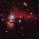 Horsehead nebula,                                Mark Burkatzki