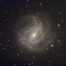 M 83,                                Robin Clark - EAA imager