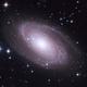 M81,                                ParyshevDenis