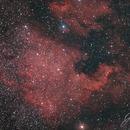 NGC7000 - North America Nebula,                                Joe