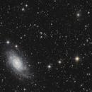 NGC 2403,                                echosud