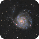 Pinwheel M101 with Halpha - Celestron 8,                                Arnaud Peel