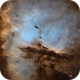 NGC 281: The Pacman Nebula,                                Thomas Edward Chr...