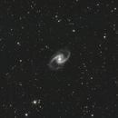 NGC 1365,                                Ian Parr