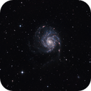 M 101 (Pinwheel Galaxy),                                Frank Rogin