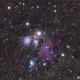 Angel Nebula (NGC2170),                                KiwiAstro