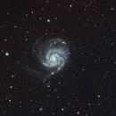 M101 (The Pinwheel Galaxy),                                Trevor Nicholls