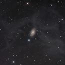 NGC 918 Behind the dust in Aries LRGB,                                John D (jaddbd)