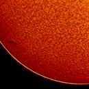 2018.05.09 Sun H-Alpha,                    Vladimir