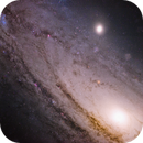 closeup on M31 (starless),                                Gianni Cerrato