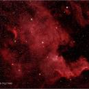 NGC7000,                                Joshua