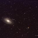 M 81 Bode Galaxy,                                Federico Bossi