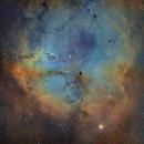 [SHO] Sh2-131 - IC1396 - Trompe de l'Elephant @ Calern,                                Raypulsif