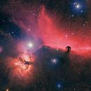 Horsehead and Flame Nebula,                                Anne-Maree McComb