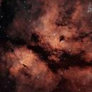 Gamma Cygni Nebula,                                Nicholas Bradley