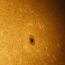 Granulation, faculae and sunspot AR2833,                                Tristan Campbell