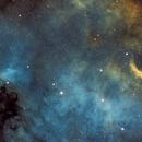 North America Nebula NGC7000,                                Wissam Ayoub