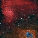 IC 405 & IC 410 - The Flaming Star and the Tadpoles,                                Timothy Martin & Nic Patridge