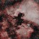 NGC7000: North American Nebula (HOO) (2020),                                Daniel Tackley