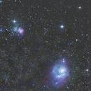 Lagona y Trifida,                                Wilmari