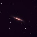 M82 w SN ,                                Michael Bailey