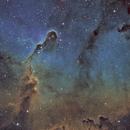 IC1396 - Elephant's Trunk Nebula [SHO],                                Tobias Borer