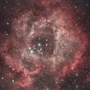 rosette nebula,                                  Roland Ivan