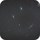 Leo Triplet - M65 M66 NGC3628,                                Samuel Müller